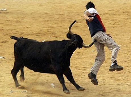 The Right Endings Of Bullfights Funny Accidents Funny Posters Funny Gif