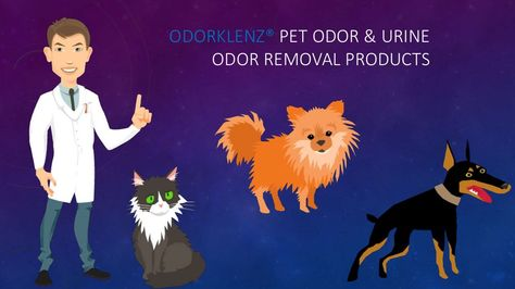 www.odorklenz.com/pets.Odorklenz® Pet Odor & Urine Odor Removal Review provides all the information that you need to safely remove pet  and urine odors. Made from all natural product this is safe to use around your pets and family #complete odor elimination #urine odor remover, #petodoremover