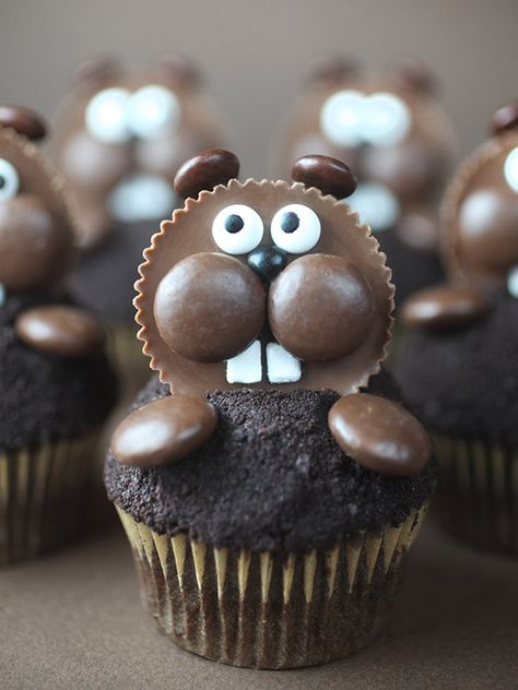 Happy Groundhog Day!!! I know it's late in the game to make these little guys, but I had a last...