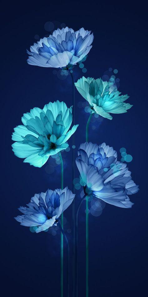 Gemeinsam mit LG Hausys an einer Vielzahl von Blumenvisualisierungen und Mustern … - Phone Wallpaper