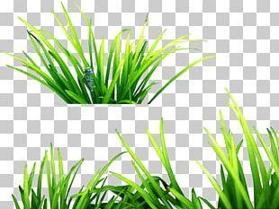 Picsart Photo Studio Editing Android Png Clipart Android Bcb Download Edit Editing Free Png Download In 2020 Photo Studio Picsart Png