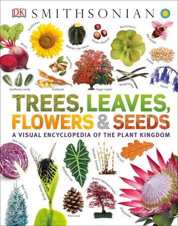 Trees Leaves Flowers And Seeds By Dk 9781465482426 Penguinrandomhouse Com Books In 2020 Leaf Flowers Seeds Book Tree