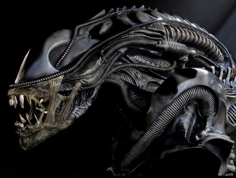 Aliens   Alien vs predator, Aliens movie, Alien concept art