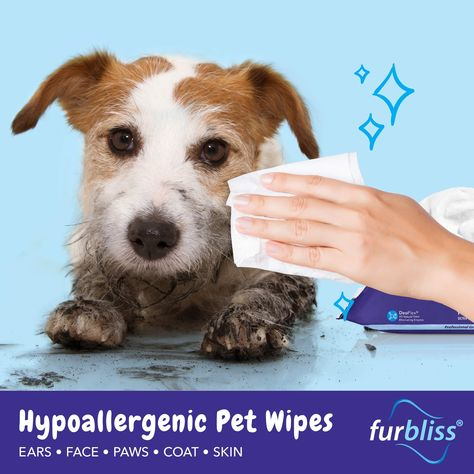 Furbliss Pet Wipes For Dogs Andamp Cats Details Can Be Found By Clicking On The Image It Is An Affiliate Link In 2020 Pet Wipes Dog Grooming Supplies Dog Grooming