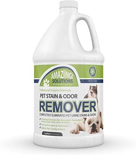 Best Seller Amaziing Solutions Pet Odor Eliminator Stain Remover Carpet Cleaner Dog Urine Cat Pee Professional Strength Enzymatic Solution Natural Enzymes Car In 2020 Stain Remover Carpet Pet Odor Eliminator Pet Odors