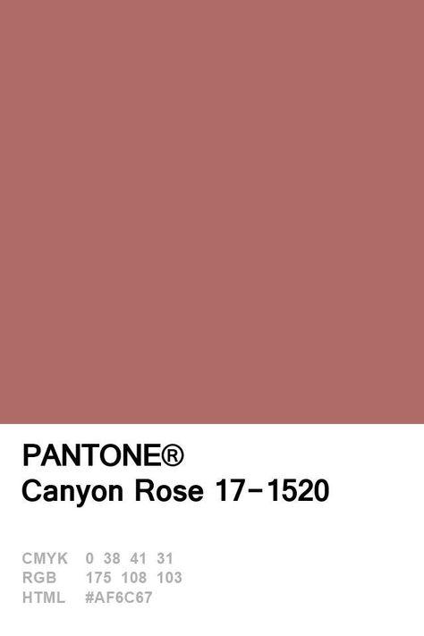 best screen rose color palette pantone popular me