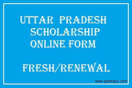 UP Scholarship Online Form Students Scholarships Pinterest - scholarship form