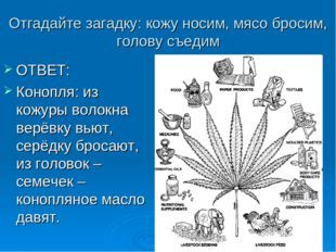 Загадки конопля семена марихуаны курьером спб