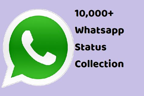 10000 Whatsapp Status Collection Gratest Collection On