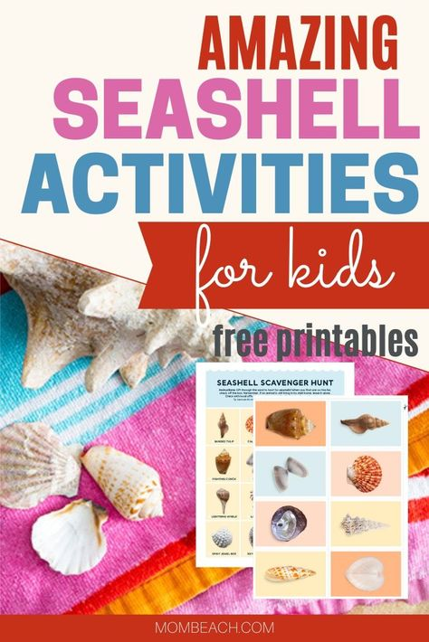 Amazing Seashell Activities for Kids - Free Printables