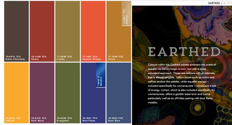 EARTHED : Color Palette