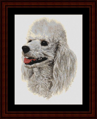 White Poodle - Cross Stitch Collectibles fine art counted cross stitch pattern