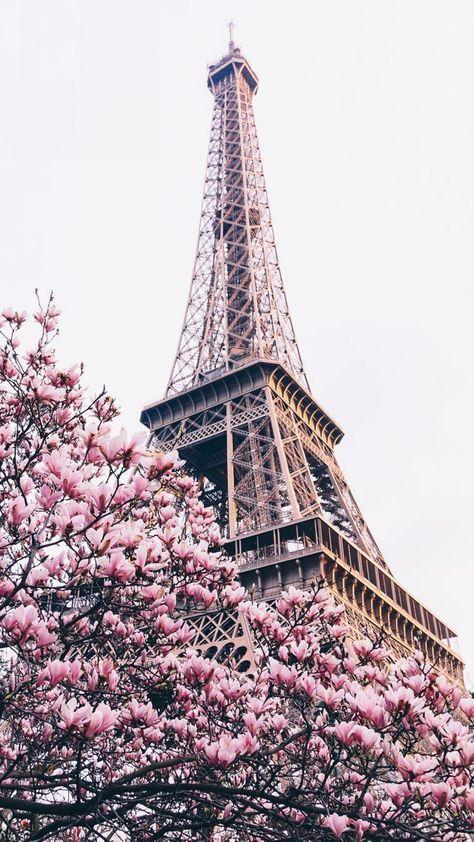 ------* SIEMPRE NOS QUEDARA PARIS *------ - Página 36 F1abc0e9c64262a343a9c4b97f676cf4