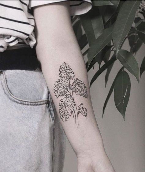 68 Ideas For Plants Tattoo Monstera In 2020 Tattoos Minimalist Tattoo Pattern Tattoo