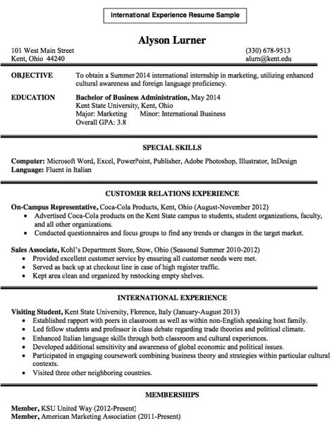 International Experience Resume Sample - http\/\/resumesdesign - resume excel skills