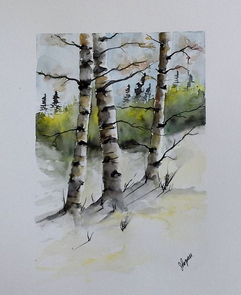 Original Watercolor Painting Birch Tree Art Birch Trees