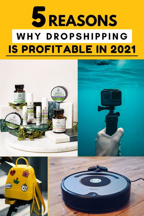 5 Reasons Why Dropshipping Is Profitable In 2021 | profitable dropshipping