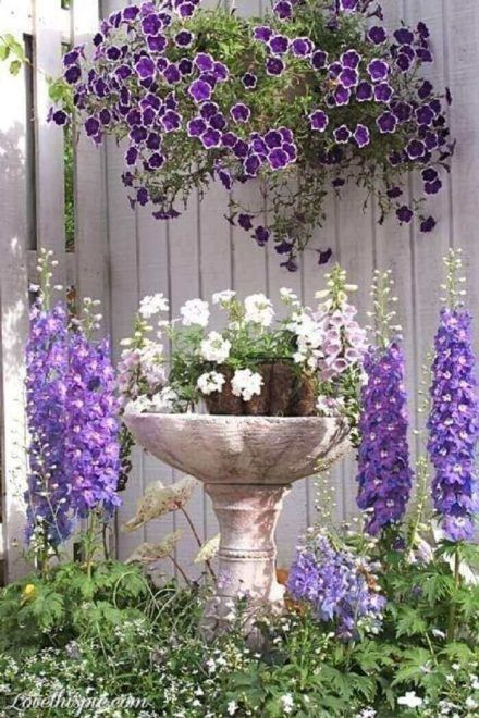 Petunia Meaning Types How To Grow 65 Photos The Contrast Of The Colors That Petunia Flowers Provide Is Eye Popping In 2020 Petunias Delphinium Pretty Gardens