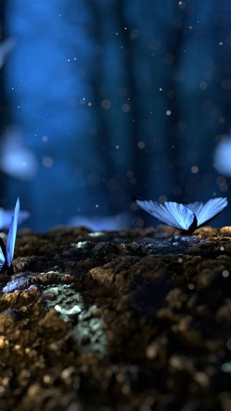 Blue Butterfly Wallpapers Wallpaper Cave In 2021 Blue Butterfly Wallpaper Butterfly Wallpaper Android Wallpaper Blue Blue wallpaper butterfly images hd