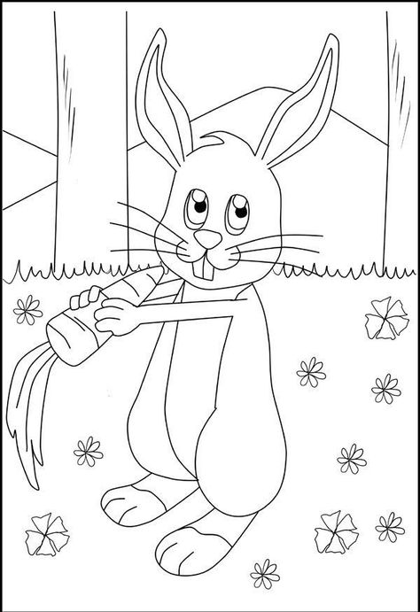 17 ausmalbilder hase ideas  coloring pages bunny