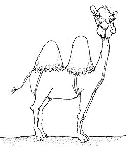 """""""They've Put a Brassiere On a Camel""""    They've put a brassiere on a camel,  She wasn't dressed proper, you know.  They've put a brassiere on a camel,  So that her humps wouldn't show.  And they're making other respectable plans,  They're even even insisting the pigs should wear pants,  They'll dress up the ducks if we give them the chance  Since they've put a brassiere on a camel.  They've put a brassiere on a camel,  They claim she's more decent that way.  They've put a brassiere on a camel,  The camel had nothing to say.  They squeezed her into it, i'll never know how,  They say that she looks more respectable now,  Lord knows what they've got in mind for the cow,  Since they've put a brassiere on a camel."""