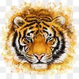 Tiger Png Images Download 2500 Tiger Png Resources With Transparent Background Tiger Face Metal Art Prints Painting Illustration