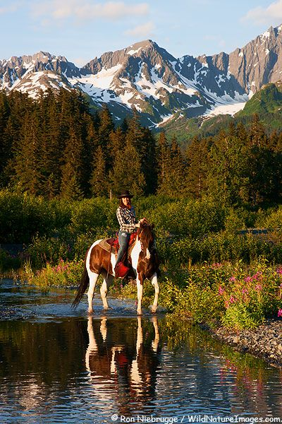 Horseback Riding in Seward, Alaska. Riding in the mountains is definitely on… Oh The Places You'll Go, Places To Travel, Places To Visit, North To Alaska, Into The West, Alaska Travel, Alaska Trip, Trail Riding, Western Riding