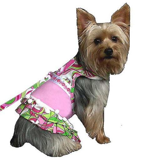 Pink Retro Print Dog Harness Dress With Matching Leash Cute Dog