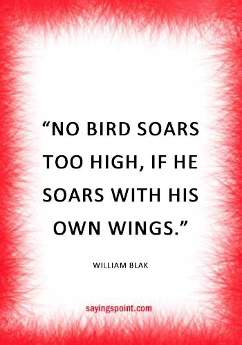 Flying Quotes War Quotes Fly Quotes Quotes