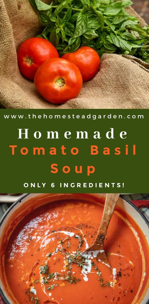 Tomato Basil Soup - My homemade tomato basil soup recipe takes only a few simple ingredients, and can be ready to eat within 30 minutes. My favorite soup recipe! - Easy Homemade Tomato Basil Soup (only 6 ingredients! Homemade Tomato Basil Soup, Tomato Soup Recipes, Tomatoe Basil Soup Recipe, Easy Tomato Basil Soup, Canning Tomato Soup, Tomato Soups, Easy Homemade Soups, Tomato Basil Bisque, Vegetarian