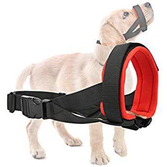 Amazon Com Ajustavel Cao Cuidados Focinho Pp Pequeno Medio Grande Ou Gg Pet Shop Pet Shop Caes Roupa Cirurgica