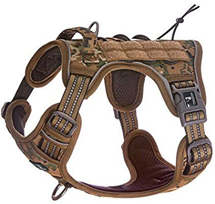 Amazon Com Fivewoody Tactical Service Dog Harness Training No Pulling Front Clip Leash Attachment Refle Tactical Dog Harness Dog Training Harness Dog Harness