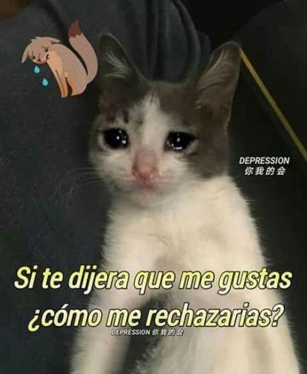 42 Trendy Memes De Amor Humor Memes Romanticos Memes Divertidos Memes