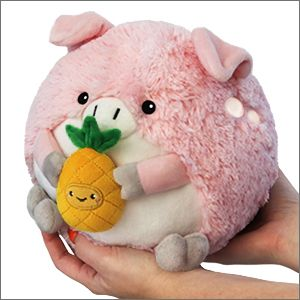 Mini Squishable Pig Holding A Pineapple Mini Pigs Baby Pigs