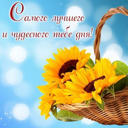 фото открытка хорошего дня