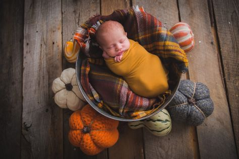 Outstanding Pregnant mom info are offered on our site. Have a look and you wont be sorry you did. Fall Newborn Pictures, Fall Baby Pictures, Newborn Baby Photos, Newborn Shoot, Fall Photos, Halloween Baby Pictures, Monthly Baby Photos, Boy Newborn, Fall Newborn Photography