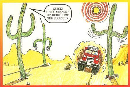 Funny Humorous Cactass Novelty Postcard