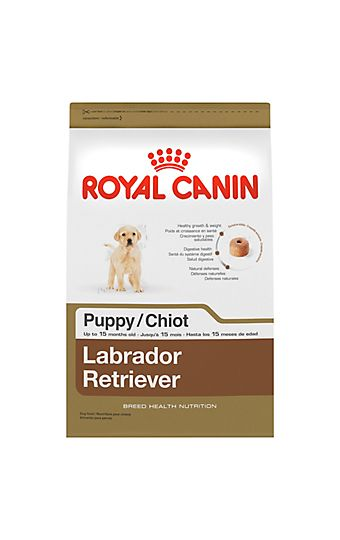 Puppy Food And How Much To Feed A Puppy Royal Canin Labrador Puppy Puppies Labrador Puppy Training