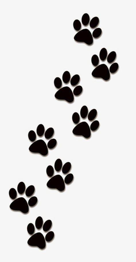 Creative Paw Prints Paw Clipart Animal Paw Prints Paw Png Transparent Clipart Image And Psd File For Free Download Tattoos De Patinha Pegadas De Animais Tatuagem De Patinhas