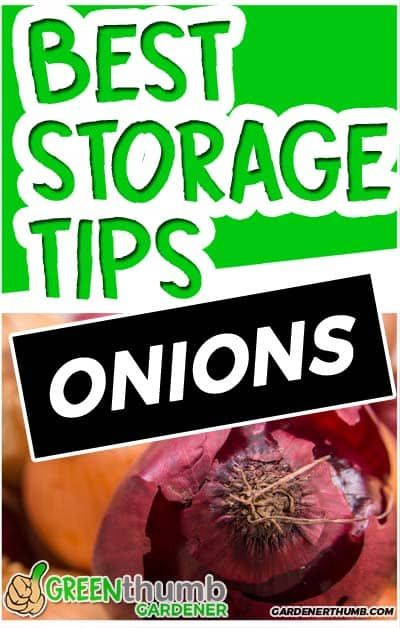 Most People Ask How Long Do Onions Last In The Food Pantry We Give You The Details On How To Store In 2020 Vegetable Garden For Beginners Onion Storage Plant Health