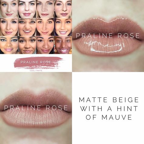 Praline Rose LipSense lipstick - Matte, Nude, and beautiful! Lasts 4-18 hours, and is smudge-proof, vegan, and cruelty free!