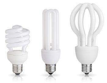 Fluorescent Light Bulbs Fluorescent Light Fluorescent Light