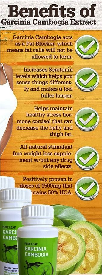 What ingredients are in pure garcinia cambogia image 3