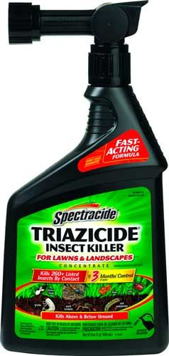 How To Get Rid Of Mole Crickets Best Mole Killers Natural Insecticides Insect Control Lawn Pest Control Green Pest Control