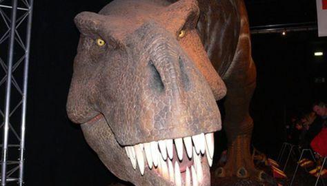 Cómo Hacer Un Dinosaurio De Papel Maché Sobres De Papel Papel Mache Cómo Hacer