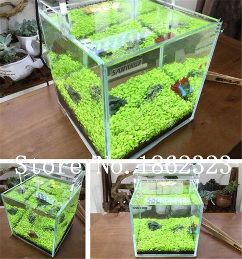 [Visit to Buy] 200 Pcs Aquarium Plants Seeds Glossostigma Hemianthus Callitrichoides Water Aquatic Fish Tank Ornamentals Landscape Decoration