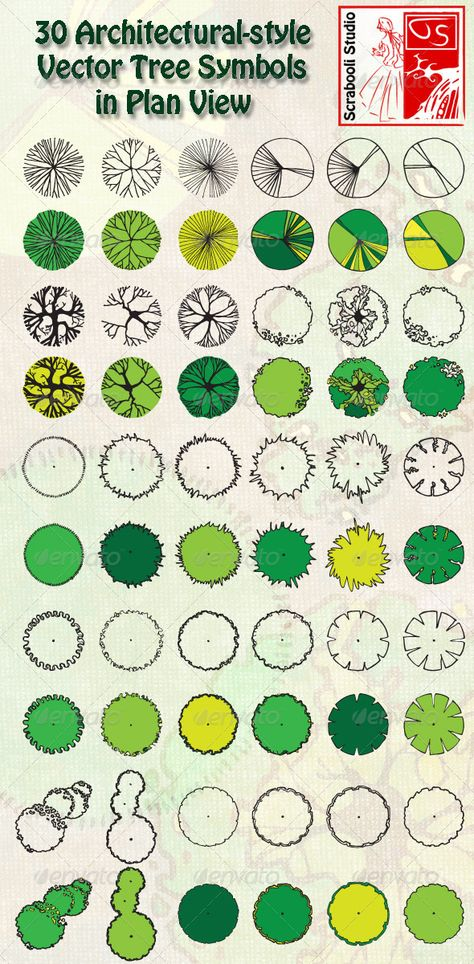 Landscape Architecture Blueprints 30 vector trees in plan view | plant symbols | pinterest