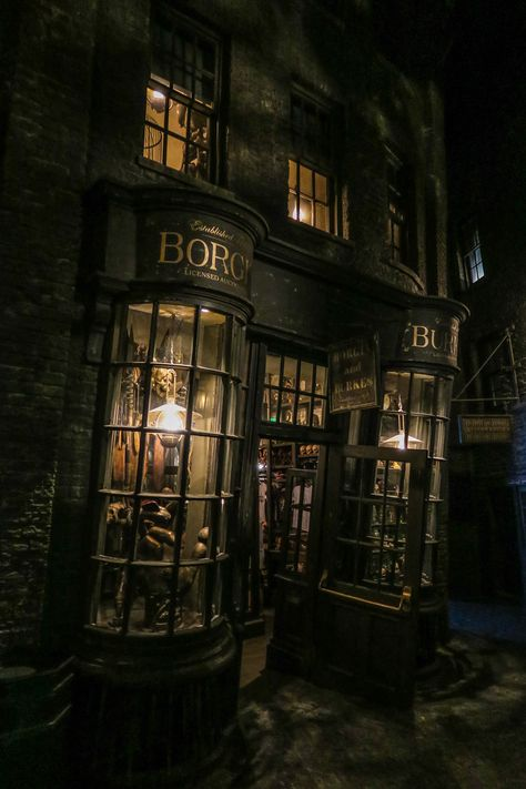 Borge and Burkes Draco Malfoy Aesthetic, Slytherin Aesthetic, Harry Potter Fandom, Harry Potter Movies, Slytherin House, Hogwarts Houses, Harry Potter Background, Orlando, Harry Potter Pictures