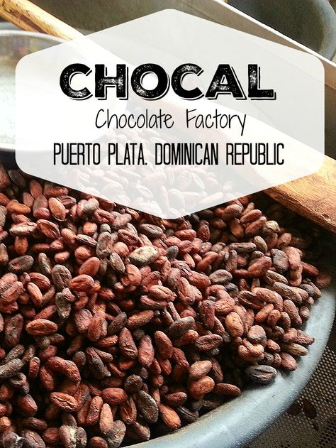 Chocal Dominican Republic Cacao Factory