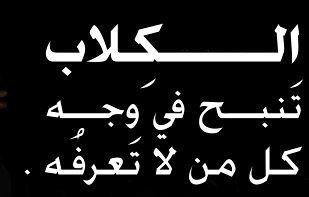 حكم عن الكلب اقوال وعبارات عن الكلب Math So True Arabic Calligraphy